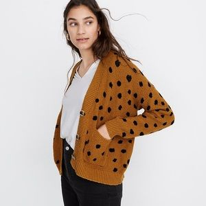 Madewell Hillview Cardigan Sweater, Painted Spots